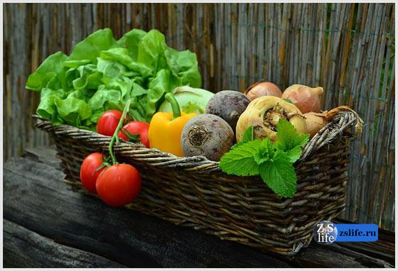 Еда с огорода