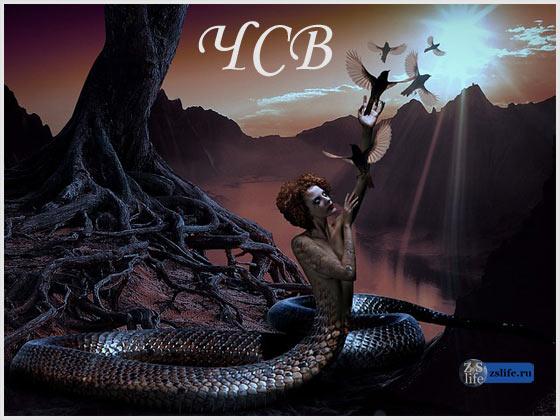 Человек-змея