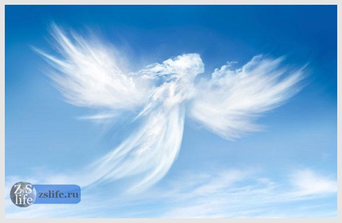 Angels B C D E  Hafapea